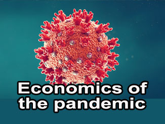 The economics of the pandemic policy